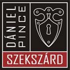 Dániel Pince logo